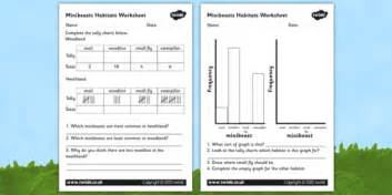 minibeast habitat graphs worksheet habitats worksheets