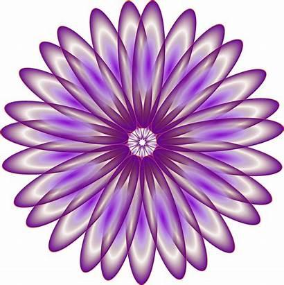 Daisy Purple Clipart Flower Svg Transparent Luncheon