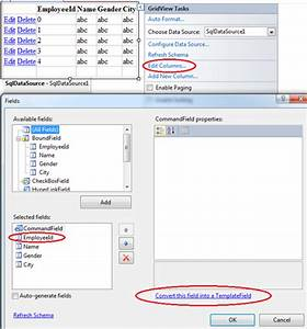 sql server net and c video tutorial gridview insert With template field in asp net