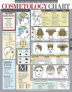 67 Best Diagram Haircut Images On Pinterest