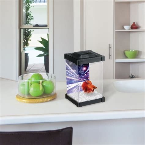 marina betta tower aquarium pour combattant