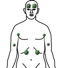 Rückenschmerzen übelkeit durchfall