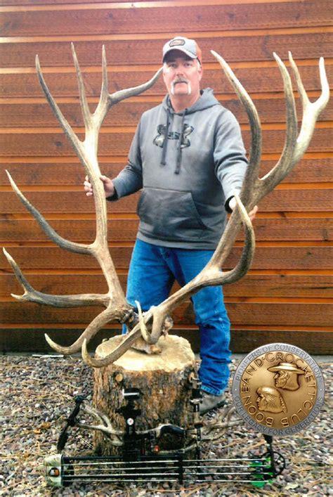 montana bowhunters elk  biggest    montana