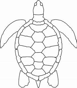 Turtle Outline Clip Art at Clker.com - vector clip art ...