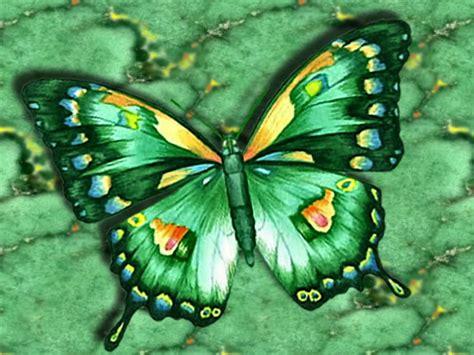 butterfly screensavers  move abstract green butterfly wallpaper art pinterest