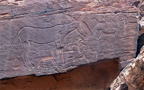 rock carvings  ancient dogs  taught  tricks