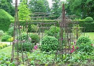 Gemüsegarten Anlegen Beispiele : prunkbohnen feuerbohnen f r balkon und garten reich ~ Lizthompson.info Haus und Dekorationen