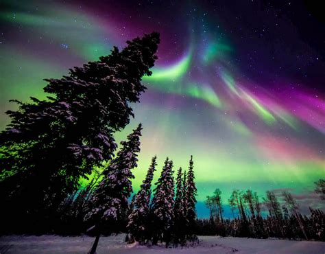 northern lights alaska aurora borealis iceland light travel winter sweden background holiday guide fairbanks cruise things visible express places fanpop