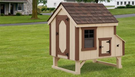 amish chicken coops  sale  nj   woodworking