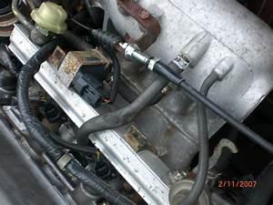 Honda Civic Egr Valve Location  Honda  Wiring Diagram Images