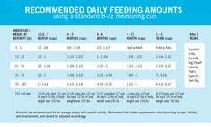 This Easy To Follow Homemade Dog Food Feeding Chart