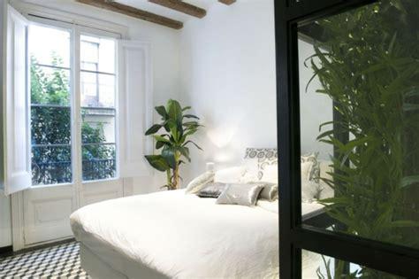 plantes dépolluantes chambre à coucher chambre a coucher plante raliss com