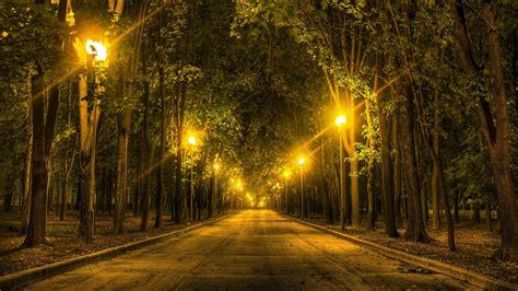 street lights   park hd wallpaper wallpaper studio