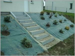Bache Sol Jardin : bache de sol pour jardin fraisier paillage lefredline ~ Teatrodelosmanantiales.com Idées de Décoration