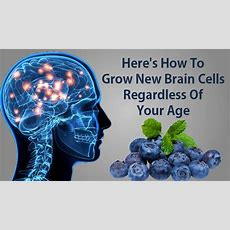 Here's How To Grow New Brain Cells Regardless Of Your Age To Improve Your Brain Health And