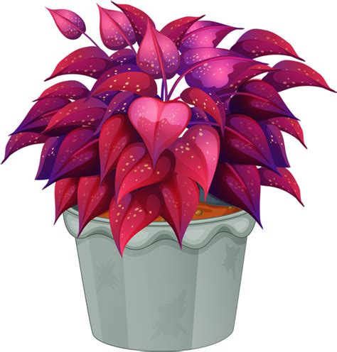 terkeren 23 gambar bunga dengan pot