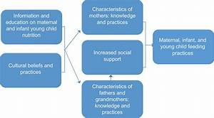Role Of Social Support In Improving Infant Feeding