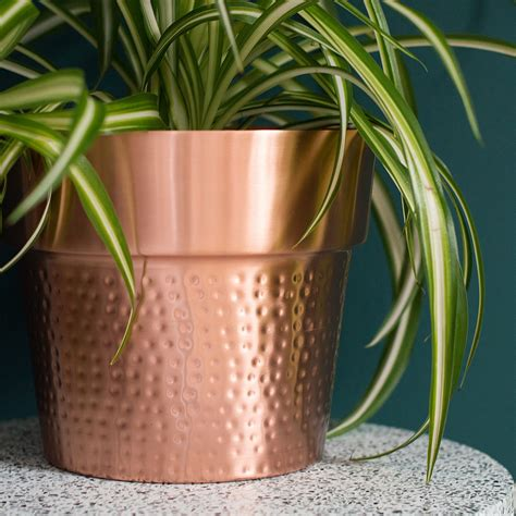 jacob copper plant pot audenza