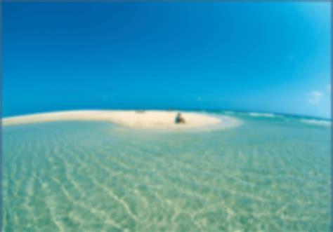 Las 10 Mejores Playas De Fuerteventura