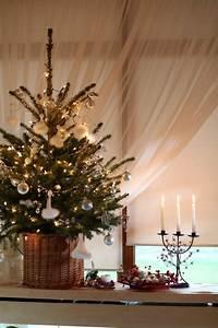 Arbol De Navidad Pequeos Arbol De Navidad Pequeos