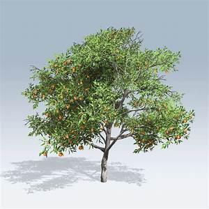Peach Tree (v6) - SpeedTree