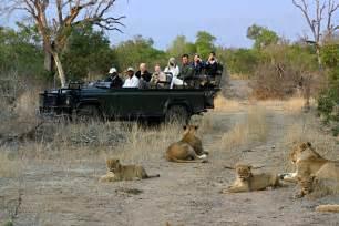 Best African Safari Tour
