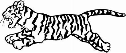 Tiger Coloring Pages Animal Drawing Printable Clipartfest