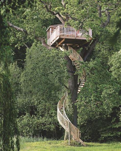 chambres dans les arbres cabane à louer dans les arbres bord de mer les arbres