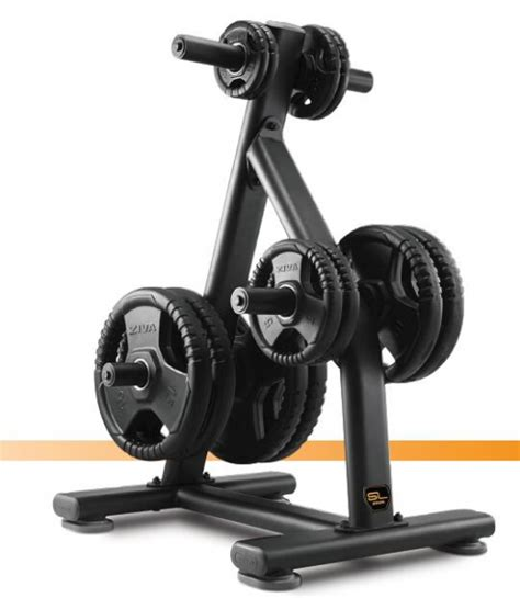 gym africa olympic weight plate rack