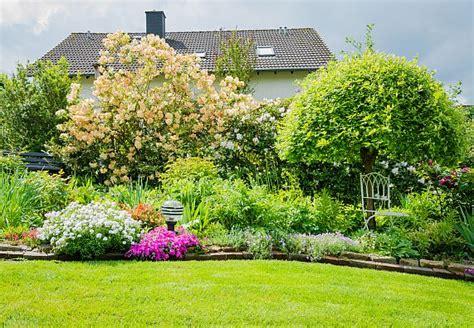 Garten Pflanzen Bäume by Kleine B 228 Ume F 252 R Einen Kleinen Garten Obi