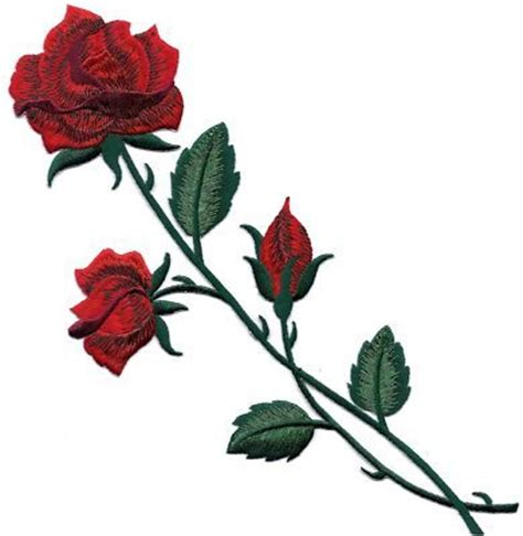 red rose buds long stem     iron