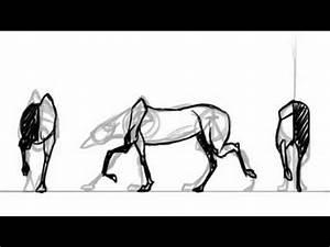 4- Legged walk cycle guide   Darkmane The Werewolf - YouTube