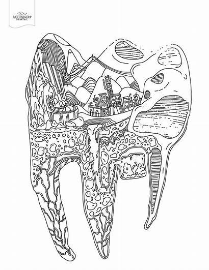 Coloring Tooth Adult Dental Books Printable Teeth