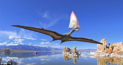 Video Appears To Capture A Pterosaur Surveying The Sky