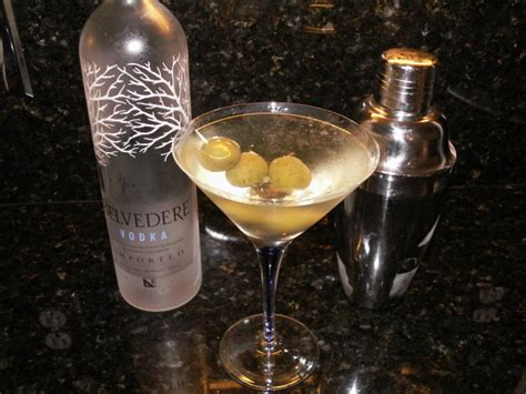 vodka martini dirty vodka martini recipe food com