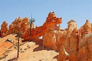 Bryce Canyon Sehenswürdigkeiten : mossy cave trail bryce canyon nationalpark bewertungen und fotos tripadvisor ~ Buech-reservation.com Haus und Dekorationen