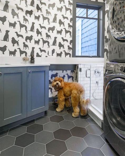 Home Design Ideas For Dogs by Top 60 Best Room Ideas Canine Space Designs