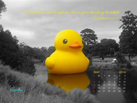 rubber ducky wallpapers gallery