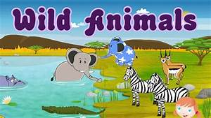 Learn About Wild Animals, Animal Sounds, Fun and ...
