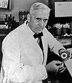 Sir Alexander Fleming's blob of mould set to SELL for £6k ...