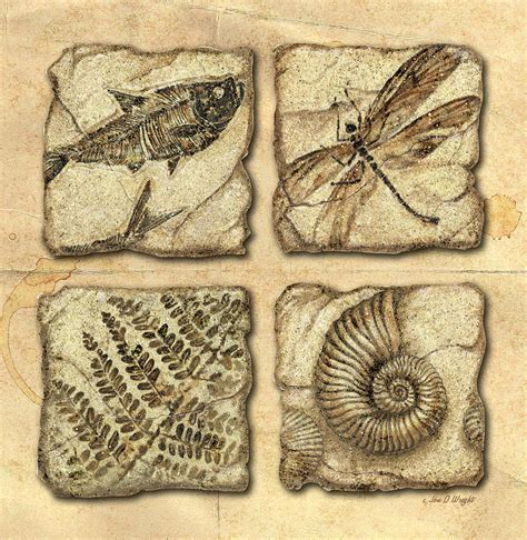 sell paintings fossils painting by jq licensing