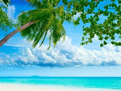 Tropical Beach Resorts Exotic Vacation Background Beaches