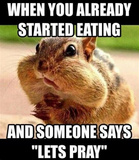 Saturday Memes Funny - 17 best ideas about saturday humor on pinterest rest day meme sunday funday meme and random