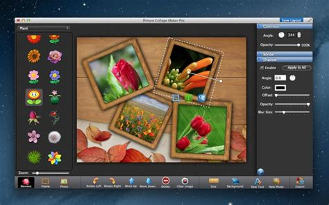 picture collage maker pro     pc