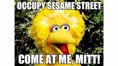 Bird Funny Quotes Debate Street Sesame Quotesgram