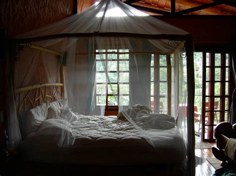 bed canopy curtains bedroom amazing canopy bed