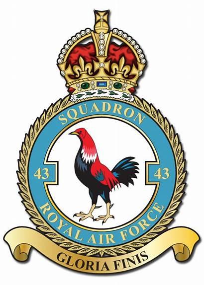 Squadron Raf 43 Ww2 Crest Crests Albino