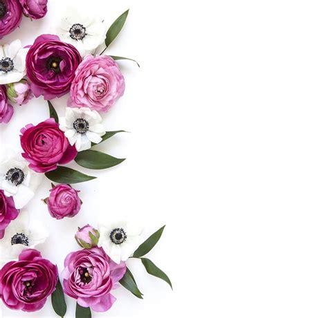 Fleur Pinterest Florencem11 Ig Florencemichon
