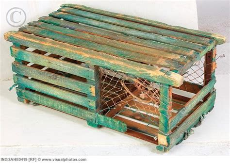 Decorative Lobster Traps Small by Best 25 Lobster Trap Ideas On Lobster Shack