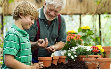 Autumn Gardening  How To Create Late Season Plant Pots